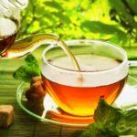 「マテ茶」が新型コロナに効く!南米生まれ「飲むサラダ」の知られざる効能とは?